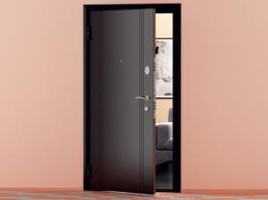 Стальные двери в городеБарнаул