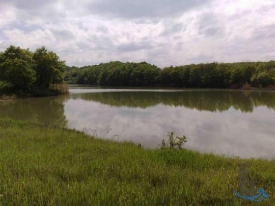 Земельный участок 14 Га. возле Озера, Леса и Гор.