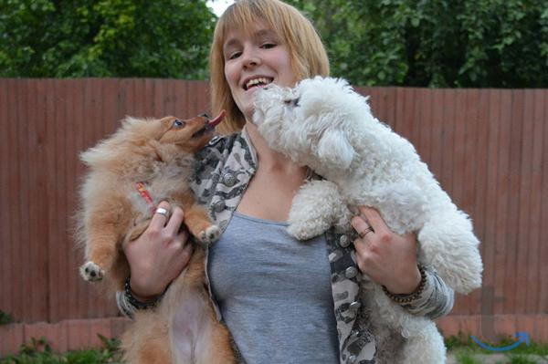 Передержка домашних собак в... в городеМосква