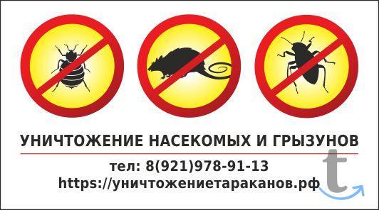 Уничтожение клопов,тараканов,др.насекомых и грызунов.