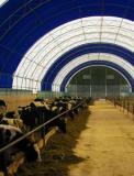 Ангары, склады, зернохранилища, фермы