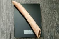 Клык моржа 26,5 см, 260 гр. Сахалин