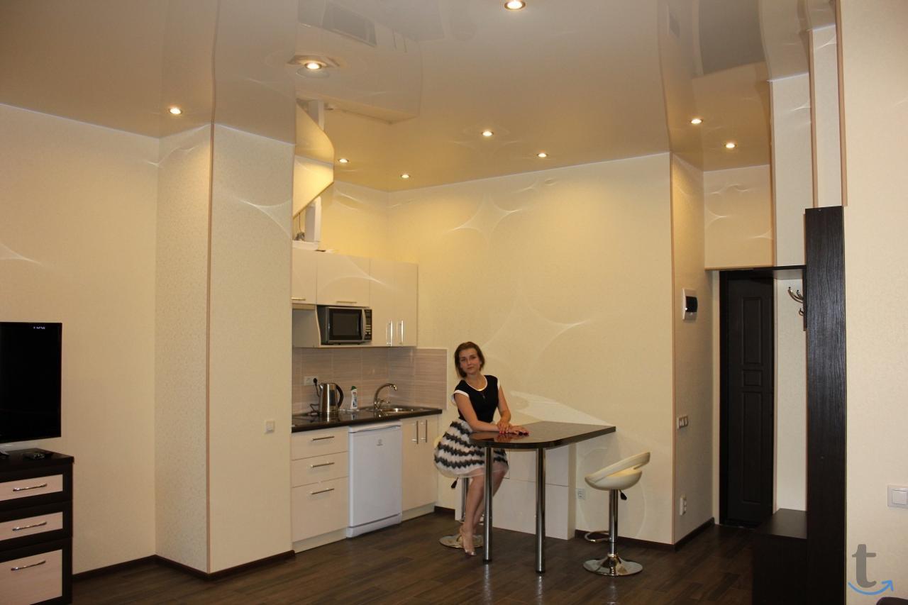 Современная квартира в центре Со...
