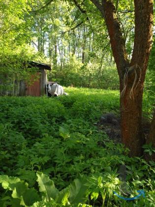 Дом с участком 12 соток  рядом с ж.д. ст.Гагаринская