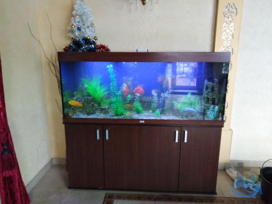 Чистка аквариума в городеКраснодар