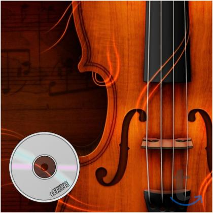 Для игры на скрипке, виолон... в городеСанкт-Петербург
