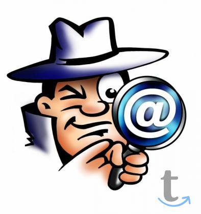 Детективные агентства и частные детективы.