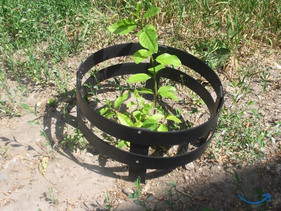 Садовое ограждение Премиум в городеРязань