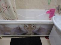 Стеклянные шторки и экраны для ванной в Ижевске.