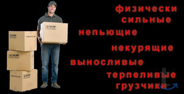 Грузоперевозки по Севастополю и региону– ТК «РазГруз»
