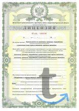 Получение лицензии на лом черных...