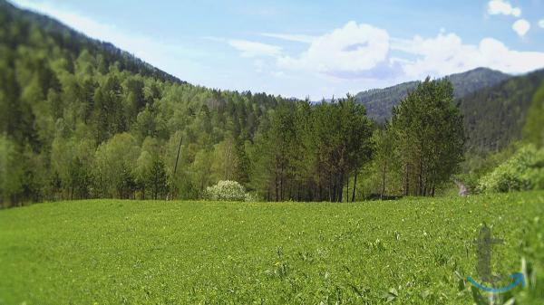 Продаем 9 гектаров земли в Горно...