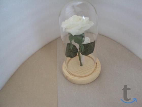 Роза с подсветкой в колбе