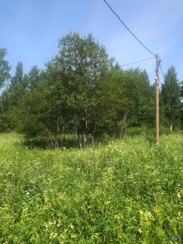 Продам земельный участок рядом с Выборгом